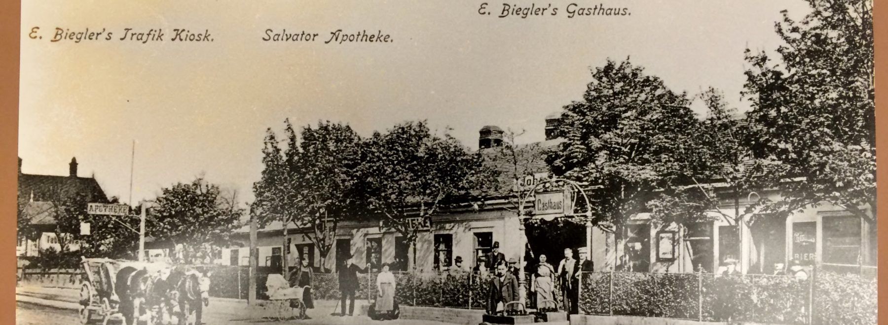 Salvator Apotheke Mödling Ansicht 1882